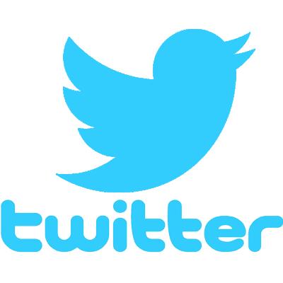 logo twitter pour cv